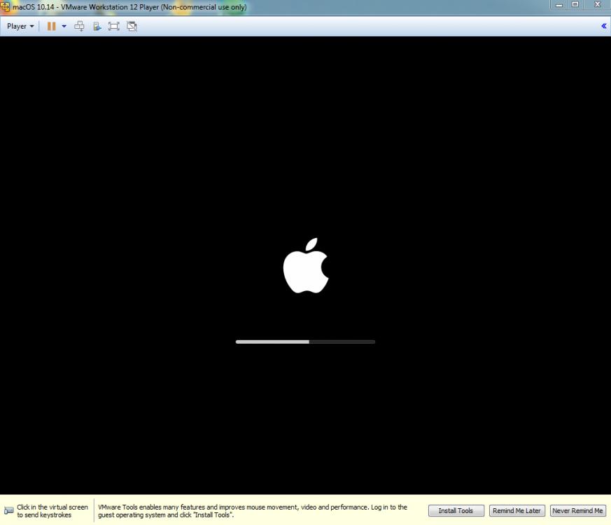 VMware_Mojave4.thumb.png.0ba5e0c4adf4b9e672bbbdf6ebb674bd.png