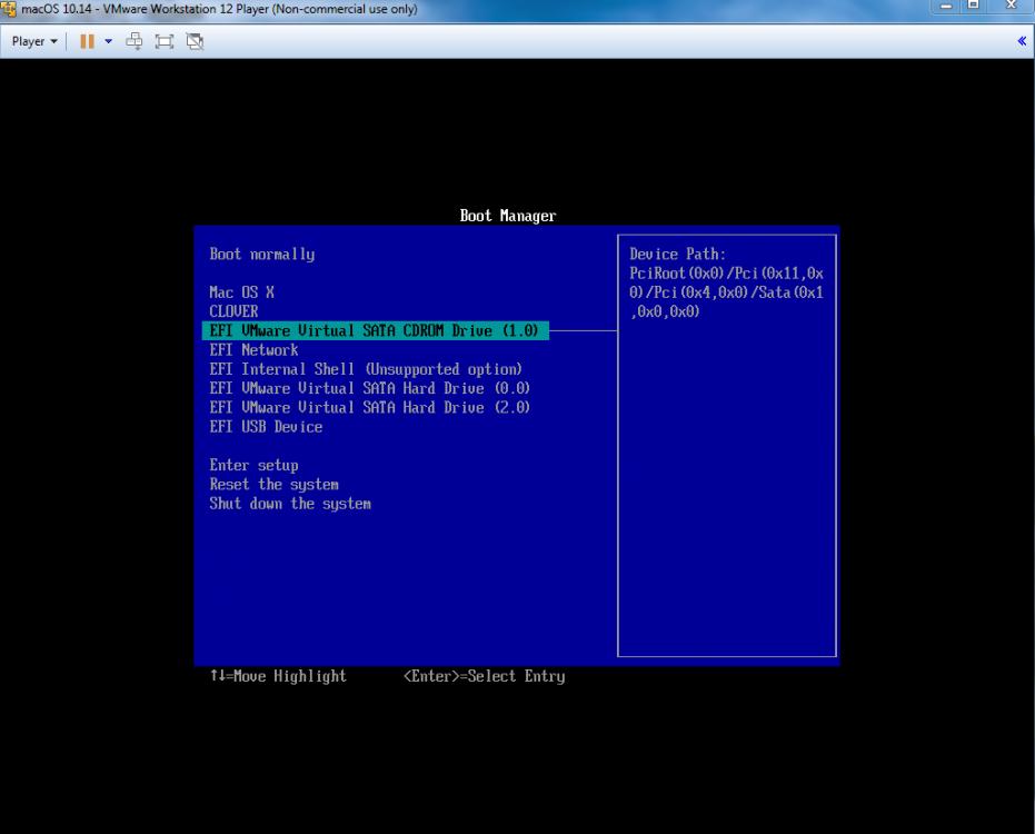 634279901_VMwareBootManagerBootfromCDROM.thumb.png.c3beb452e3e8e3b3d951cd287e4bd456.png