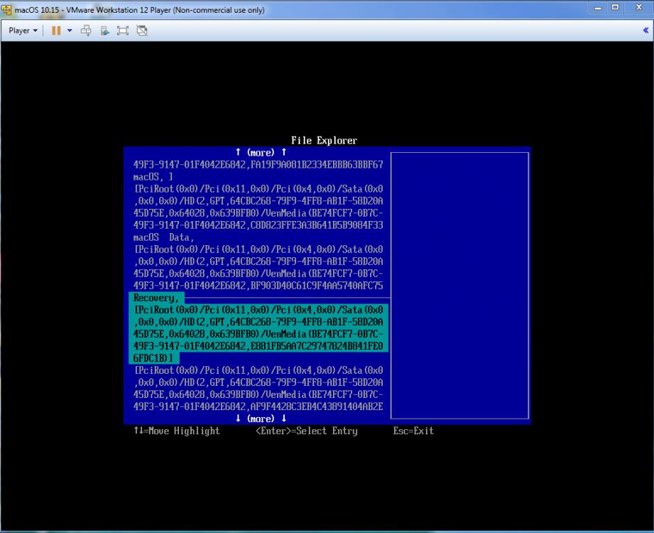 650197618_VMwareAddRecovery1.thumb.png.935b82ecc9170452250bf308ae6f90a4.png