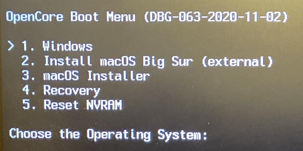 OC_Boot.thumb.jpg.fdbbdc42dbbc314c349451907fc5d3a6.jpg