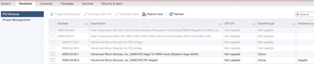 localhost.ashlab.dev - VMware ESXi 2021-01-17 02-52-06.png
