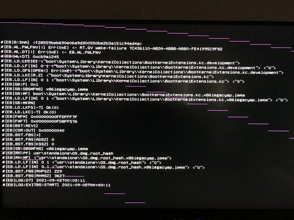 OpenCore-Boot-Lines-NEW.thumb.JPG.8f782bea8eb8d7f6a713fb20169733c9.JPG