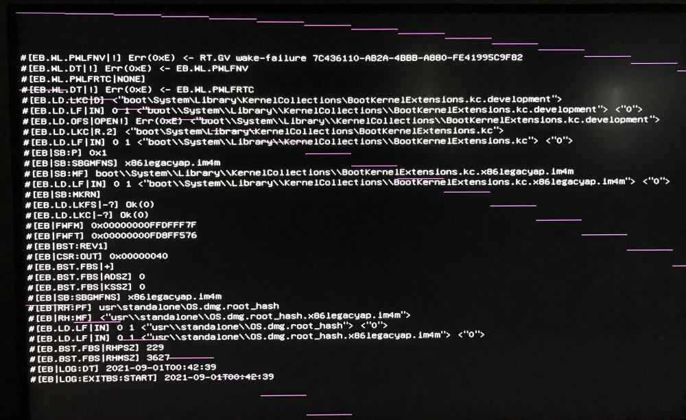 OpenCore-Boot-Lines.thumb.JPG.c015977a065e9fce74b7a175b2e5cfea.JPG