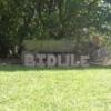 bidulemuch